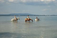 Ein erfrischendes Bad im Bodensee